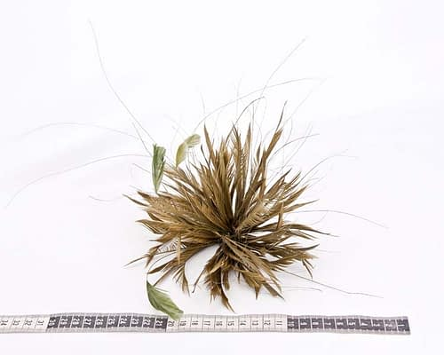 Craft & Millinery Supplies -- Trish Millinery- olive feather flower fascinators making