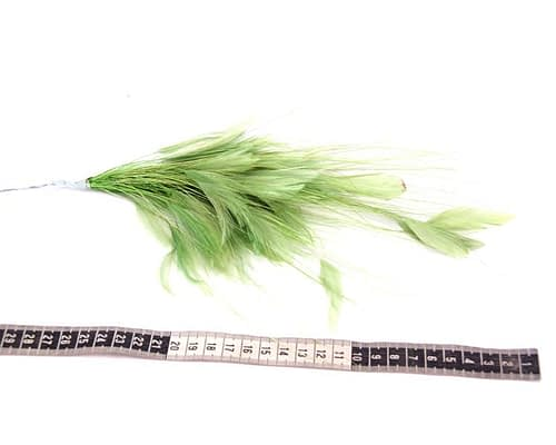 Craft & Millinery Supplies -- Trish Millinery- hill green coque feather tree
