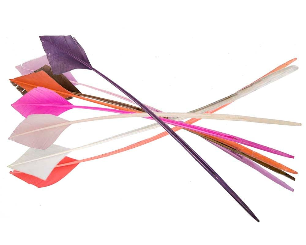 Long arrow turkey feather