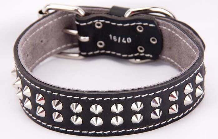 Belts From OZ - collar2 black