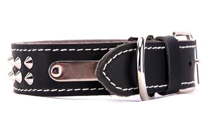 Belts From OZ - collar2 black2