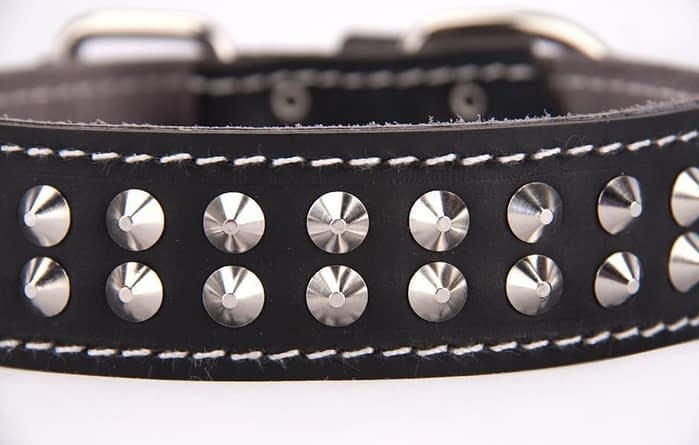 Belts From OZ - collar2 black1