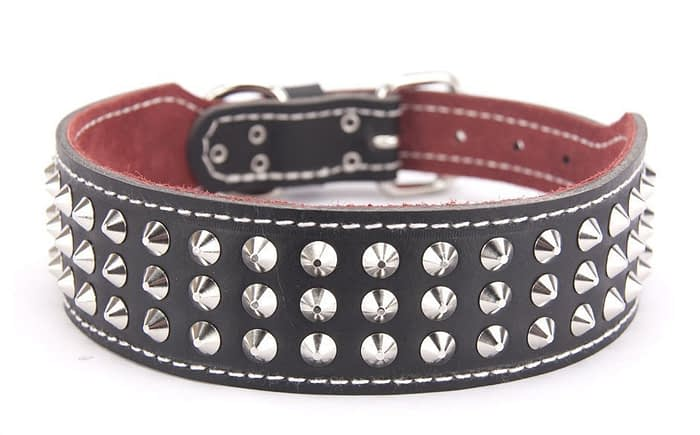 Belts From OZ - collar3 black